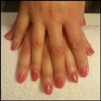 Cotton pink (1).jpg